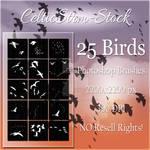 Bird Brushes by CelticStrm-Stock by CelticStrm-Stock