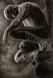 SPIDERMAN 3 by KLSADAKO
