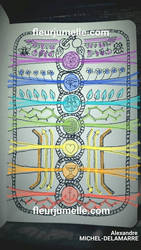 Les 7 corps de l'arbre de vie (esquisse)