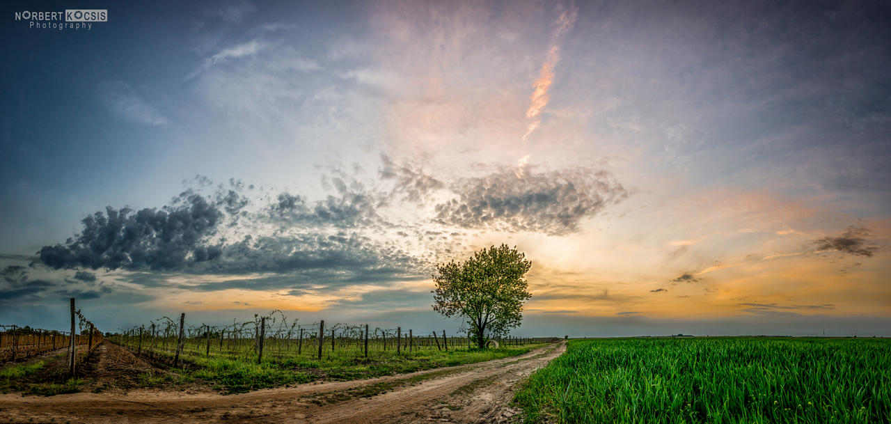 Resting region by NorbertKocsis
