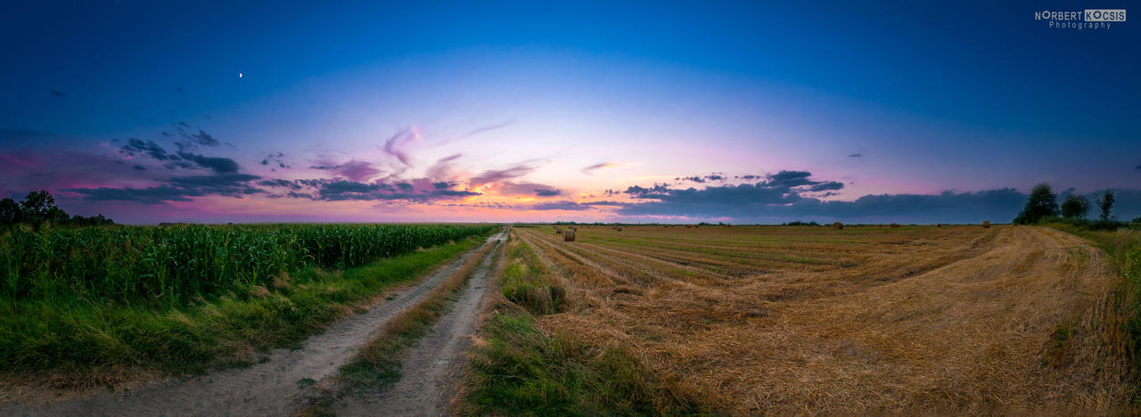 Harvested field by NorbertKocsis
