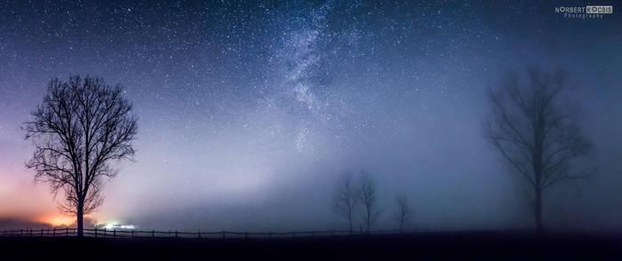 The night in fog
