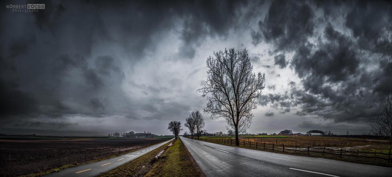Winter rain by NorbertKocsis
