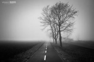 Foggy, wet, muddy bike path by NorbertKocsis
