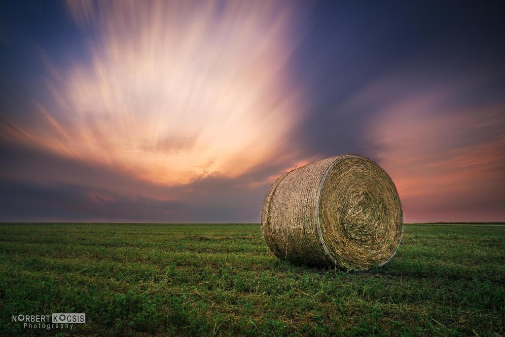 Straw sunset by NorbertKocsis