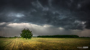 And the sky falling by NorbertKocsis