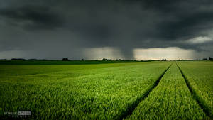 The incoming storm and green field