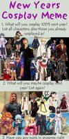 New Year's Cosplay meme 2013