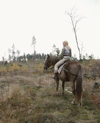 Look at my Horse by nezukuro