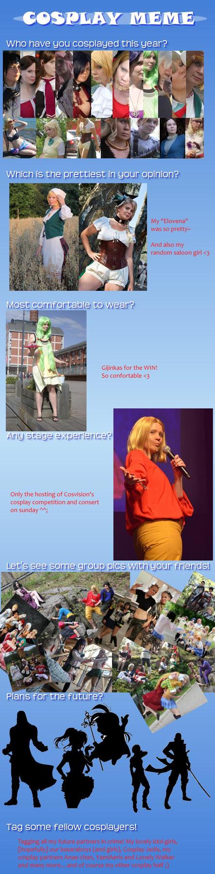 Cosplay meme - year 2014 by nezukuro