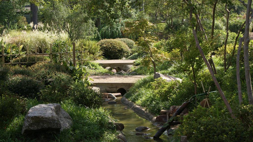 Zen Garden - Houston, TX Pt.3 by LotusWhispers on DeviantArt