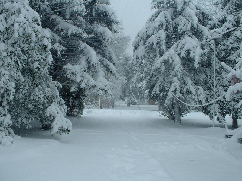 snow scene 33