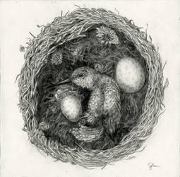 Little Bird by tdylan
