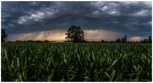 thunderstorm by corniger-aries