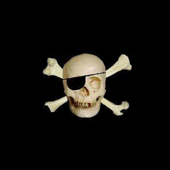 Jolly Roger by fugitive247