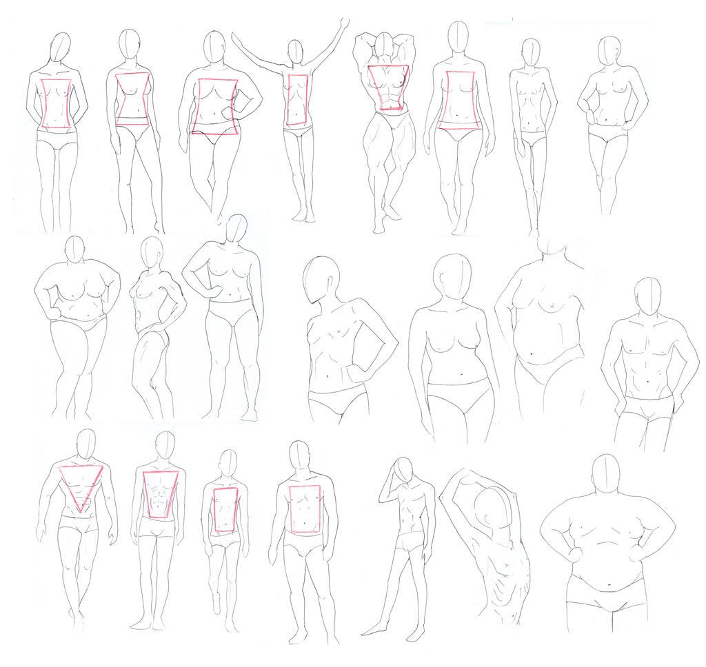 Body Types - masterpost by Damatris