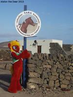 Granja Tara, Horse Ranch on Fuerteventura , MLP PO by AtalontheDeer