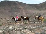Granja Tara Vulcano Ride