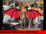 WingsDragnaros2Dragon wing foldable - 3m span