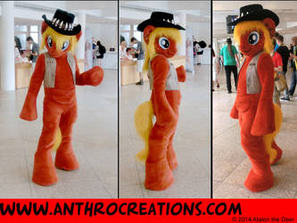 Galacon2014 Boomerang3view by AtalontheDeer