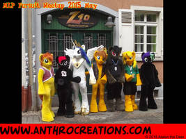 MLP Fursuit meetup 2015 May by AtalontheDeer