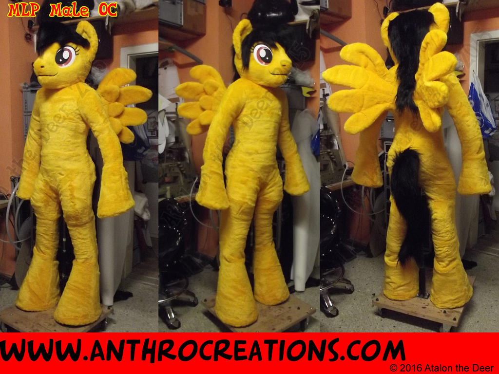 Horse Pony Male OC  Yellow by AtalontheDeer