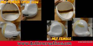MLP Female open Jaw Headbase