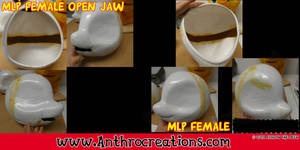 MLP Female open Jaw Headbase