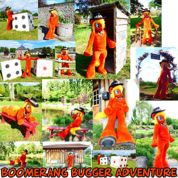 Collage Boomerang Bugger