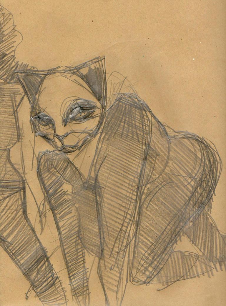Catlady by mrtrishe-II