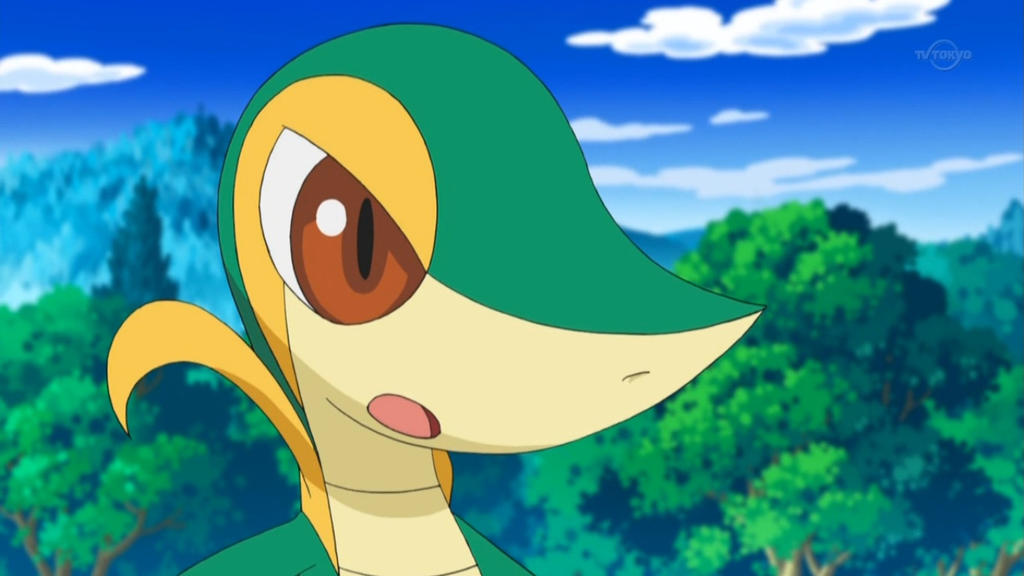 Image Gallery Snivy Anime