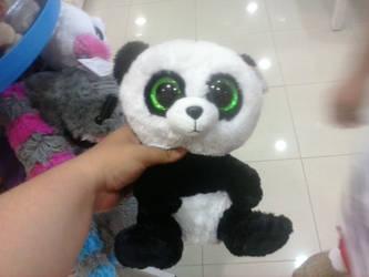 241638c7002 PoKeMoNosterfanZG 8 0 TY BEANIE BOO Bamboo The Panda Plush 1 by  PoKeMoNosterfanZG
