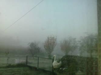 Foggy Morning in Gornji Prnjarovec 2 by PoKeMoNosterfanZG