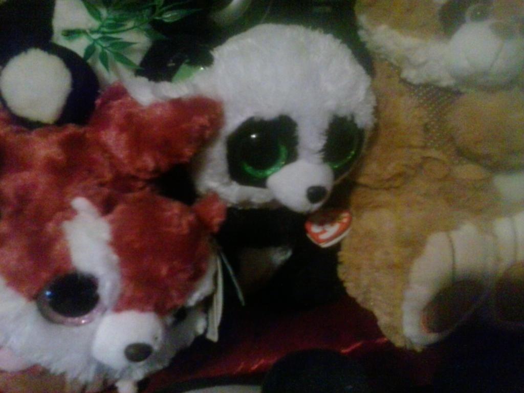 f009829fb19 My TY Beanie Boo Bamboo Panda Plush 172 by PoKeMoNosterfanZG on ...