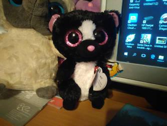 861715e218f Blueghost136 5 7 My Small TY Beanie Boo Flora Skunk Plush 15 by  PoKeMoNosterfanZG