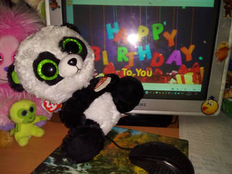 b7d72f619ba PoKeMoNosterfanZG 2 0 My TY Beanie Boo Bamboo Panda s Birthday by  PoKeMoNosterfanZG