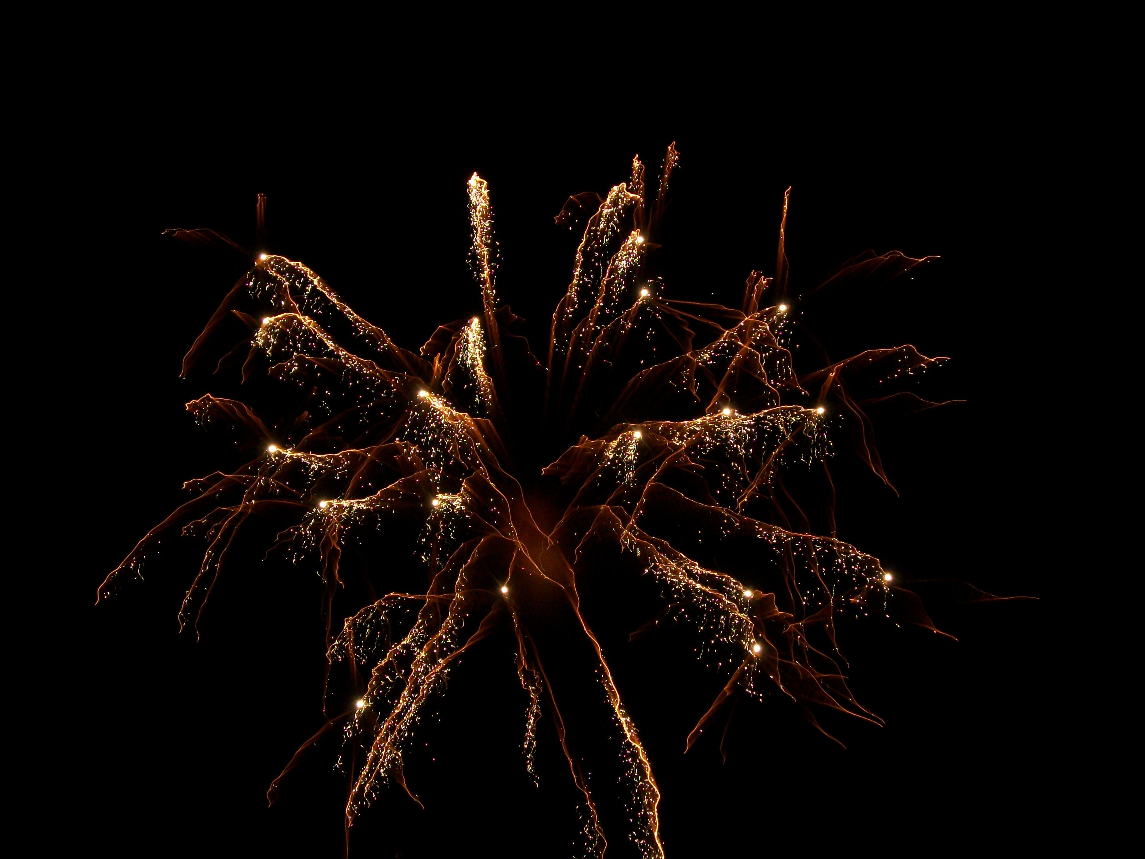 Firework by Simple-Sam