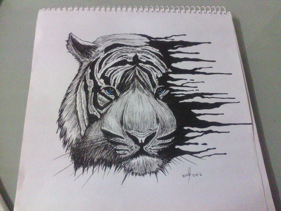 white tiger sketch by mrferdz