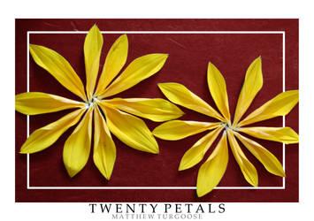 Twenty Petals by Turgoose