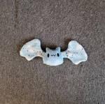 Small Minky Bat