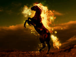 Horse on fire by ravr