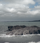 sea stock 03