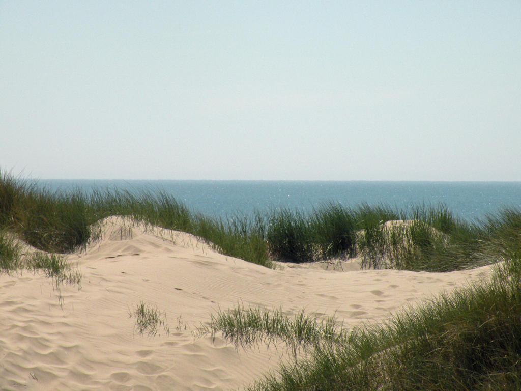 sand dunes stock 01