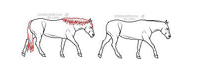 STOCK: walking pony lines by shadowsthyme