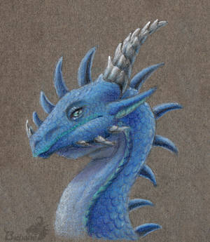 Portrait of the dragon