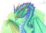 Portrait of Rhoeo dragon by Behane