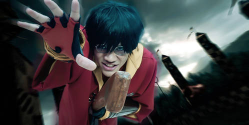 Harry Potter - Gryffindor Seeker VI by DashingTonyDrake