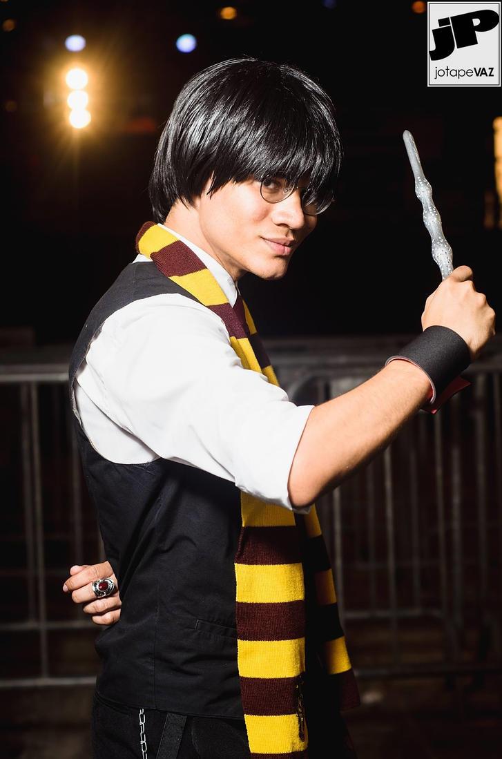 Harry Potter - The Auror Years by DashingTonyLima