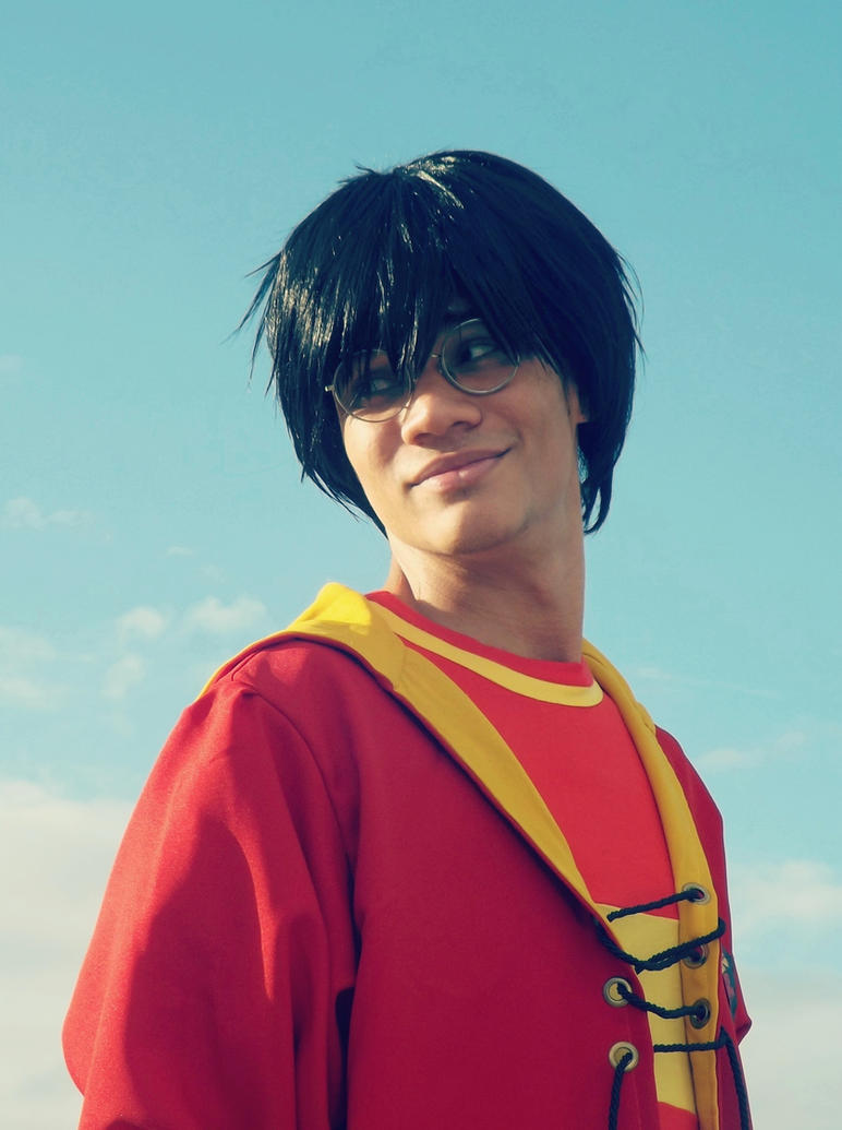 Harry Potter - Gryffindor Seeker VIII~ by DashingTonyLima