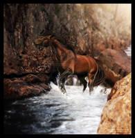 Splashing by Velaija